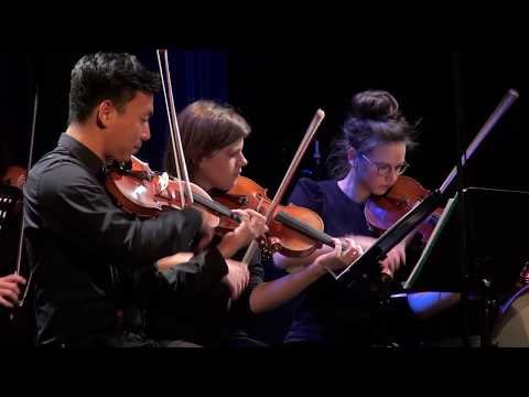 Video RobSoelkner 4tet with Strings (live)