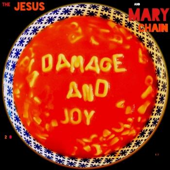 Cover Damage and Joy