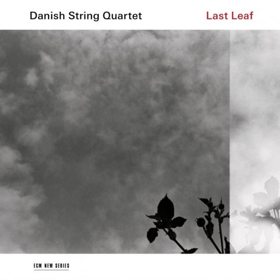 Cover Last Leaf